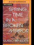 Springtime in a Broken Mirror