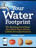 Your Water Footprint: The Shocking Facts about How Much Water We Use to Make Everyday Products