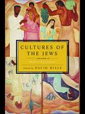 Cultures of the Jews, Volume 3: Modern Encounters