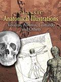 Classic Anatomical Illustrations: Vesalius, Albinus, Leonardo and Others