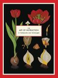 The Art of Instruction Notecards [With 16 Envelopes]