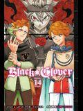 Black Clover, Vol. 14, 14