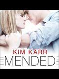 Mended Lib/E