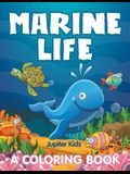 Marine Life (A Coloring Book)