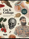Cut & Collage: A Treasury of Bizarre and Beautiful Images for Collage and Mixed Media Artists