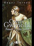 Owain Gwynedd: Prince of the Welsh