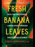 Fresh Banana Leaves: Healing Indigenous Landscapes Through Indigenous Science