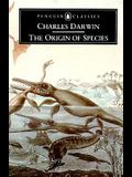 The Origin of Species by Means of Natural Selection: The Preservation of Favored Races in the Struggle for Life (Penguin Classics)