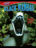Black Mambas: Sudden Death!