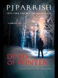 Dead Of Winter: A Louis Kincaid Thriller