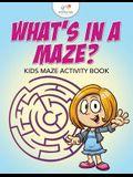 What's in a Maze? Kids Maze Activity Book