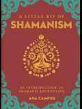 A Little Bit of Shamanism, 16: An Introduction to Shamanic Journeying