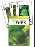 Trees of the Gulf Coast