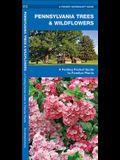Pennsylvania Trees & Wildflowers: A Folding Pocket Guide to Familiar Plants