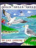 Gulls . . . Gulls . . . Gulls . . .