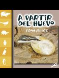 A Partir del Huevo: From an Egg