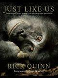 Just Like Us: A Veterinarian's Visual Memoir of Our Vanishing Great Ape Relatives