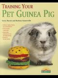 Training Your Pet Guinea Pig