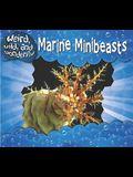 Marine Minibeasts