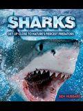 Sharks: Get Up Close to Nature's Fiercest Predators
