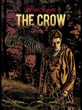 Book 4: The Crow