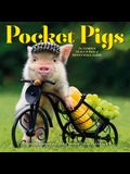 Pocket Pigs Wall Calendar 2020