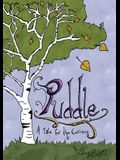 Puddle: A Tale for the Curious