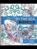Color & Frame Sea Ana Davis