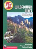Best Wildflower Hikes Washington