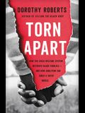 Torn Apart: How the Child Welfare System Destroys Black Families--And How Abolition Can Build a Safer World