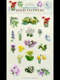 Sticker Play Scene: Wild Flowers