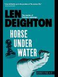 Horse Under Water (Secret Files)