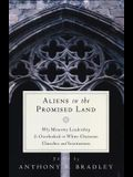 Aliens in the Promised Land: Why Minority Leadership Is Overlooked in White Christian Churches and Institutions