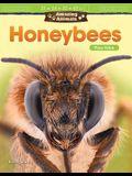 Amazing Animals: Honeybees: Place Value