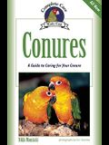 Conures: A Guide to Caring for Your Conure