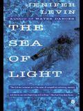The Sea of Light