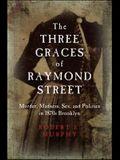 The Three Graces of Raymond Street: Murder, Madness, Sex, and Politics in 1870s Brooklyn