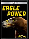 Nova: Eagle Power