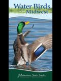 Water Birds of the Midwest: Your Way to Easily Identify Water Birds
