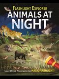 Flashlight Explorers: Animals at Night: 5 Wild Scenes to Discover with the Press-Out Flashlight