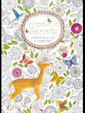 Woodland Secrets (Colouring Book): Adventures in Ink and Imagination
