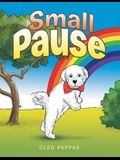Small Pause