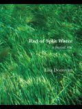 Red of Split Water