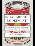 What Are You Looking At?: The Surprising, Shocking, and Sometimes Strange Story of 150 Years of Modern Art