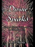Divine Sparks: Gospel Stories Discovered in Everyday Life