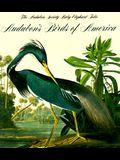 Audubon's Birds of America (Tiny Folios)