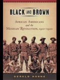 Black and Brown: African Americans and the Mexican Revolution,1910-1920