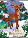 A Little Reindeer
