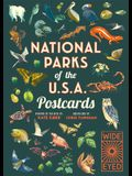 National Parks of the USA Postcards