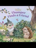 Disney Bunnies Thumper Finds a Friend